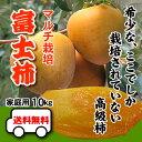 ありえない赤字覚悟の大箱10kgで【送料無料】希少な高級柿★...