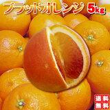 希少な ブラットオレンジ(タロッコ)5kg えひめ西宇和産一度は食べる機会のチャンス価格、送料無料
