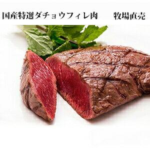 ダチョウフィレ肉