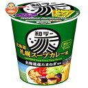 サンヨー食品 サッポロ一番 和ラー 北海道 札幌スープカレー風 72g×12個入