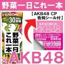 【34%OFF】期間限定お買い得!!【AKB48 CP告知シール付】カゴメ 野菜一日これ一本200ml紙パッ...
