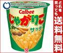 【送料無料】カルビー じゃがりこ サラダ60g×12個入
