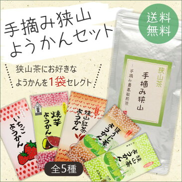 手摘み狭山〜手摘み最高級煎茶〜(100g)+羊かん