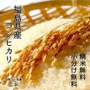 玄米【越前上庄こしひかり】10K袋9月中旬頃からは新米発送です。