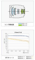 OLYMPUSM.ZUIKODIGITALED75mmF1.8(シルバー/ブラック)