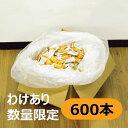 日東紅茶 カフェインレスミルクティー スティック 大容量セット 600本入り