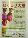 芯まで赤くシャキシャキ!サラダや漬物に最適!ダイコン 種 紅くるり 521 大根