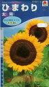 ひまわり 太陽(4ml) 〜花のタネ〜
