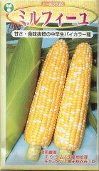 スイートコーン種ミルフィーユ(200粒)トウモロコシ