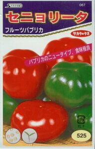 カラーピーマン種フルーツパプリカ セニョリータ(11粒)〜サカタ交配〜