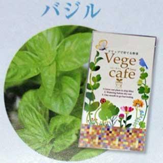 ドリップで育てる野菜シリーズ【Vege Cafe 〜ベジ・カフェ〜】 「バジル」 20袋セット