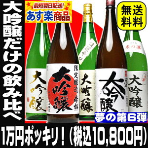 税別1万円ポッキリ!(税込10,800円)夢の大吟醸【当店限定】飲み比べ 福袋 …