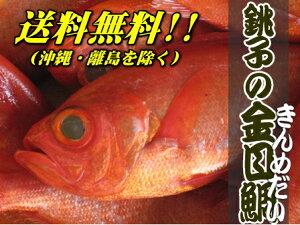 漁獲高3年連続日本一の千葉県銚子漁港で水揚されました。鮮度抜群!銚子つりきんめ特大(1尾:1k...