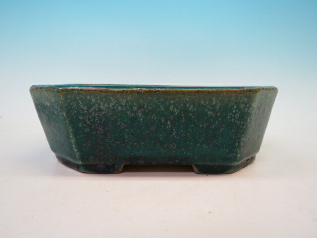 鴻陽 (売約済) 長方鉢 盆栽鉢
