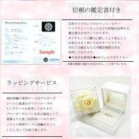 婚約指輪プロポーズリングプラチナ900クラシカルライン0.2ctHカラーSI2最高の輝きを放つトリプルエクセレントカットダイヤモンド送料無料