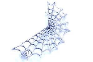 蜘蛛の巣シルバーピアス