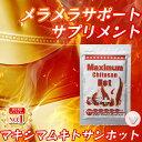 【MIYABI公式】マキシマムキトサンホットダイエット 1袋180粒入り 2