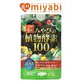 二年熟成・植物酵素100-00