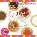 なごやプチガトー12個(名古屋お土産みやげオレンジストロベリーピーチブルーベリーミルクチョコホワイトお菓子贈答ケーキジャム焼菓子)