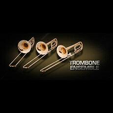 DAW・DTM・レコーダー, 音源 Vienna Symphonic LibraryVIENNA TROMBONE ENSEMBLE