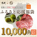 【ふるさと納税】「綾ぶどう豚」「宮崎牛」「宮崎産若鶏」焼肉セット+にんにく塩