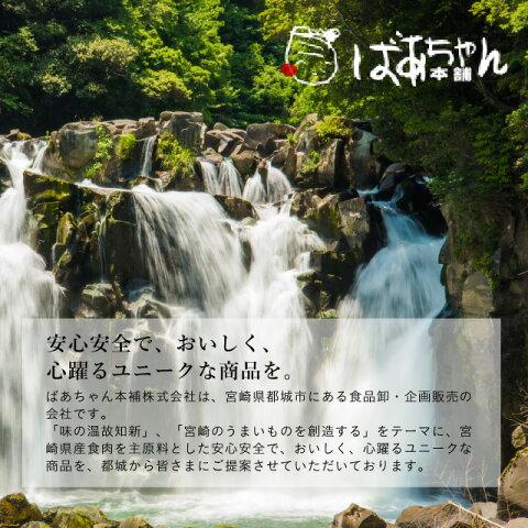 宮崎名物冷や汁【ばあちゃん本舗株式会社】
