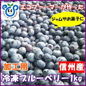 信州産【加工用】冷凍ブルーベ...
