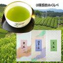 福袋 お茶 3種お茶飲みくらべセット メール便送料無料 日本茶 緑茶 煎茶 ギフト 訳あり お試し