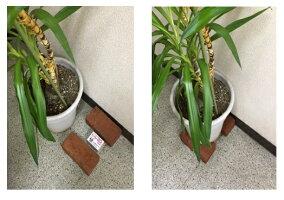 植木鉢使用