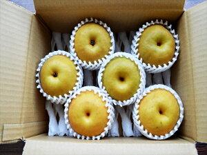 宮崎産★朝穫れたての新鮮な梨を当店が厳選した農家さんからその日のうちに仕入れ、出荷!【新...