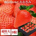 送料無料 超特大サイズ 9粒 380g以上(1粒あたり40g以上) いちご イチゴ 苺 大粒 高級  ...