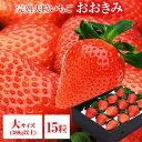 送料無料 大サイズ 15粒 380g以上(1粒あたり23〜29g) いちご イチゴ 苺 大粒 高級  ...