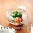 ちっちゃな おしゃれ金魚鉢 ガラスクリアー S(1.3リットル) その1