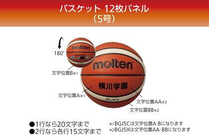 [追加料金なしでネーム加工可能!!]モルテンmoltenバスケットボール5号球1個入れボールバックセット検定球人工皮革【BGJ5X-NB10】