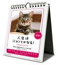 (まとめ)TANOSEE 手提袋 丸紐 茶無地・中 50枚入×6パック
