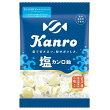 塩カンロ飴140g×1袋【カンロ】