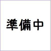 ソフビヒーロー仮面ライダー タイプワイルド発進!!編 バンダイ (10個入り1BOX)