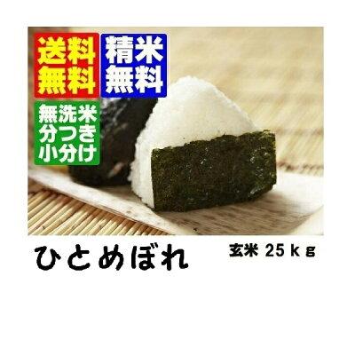 【送料無料】【無洗米】分づき対応山形県産ひとめぼれ玄米30kg