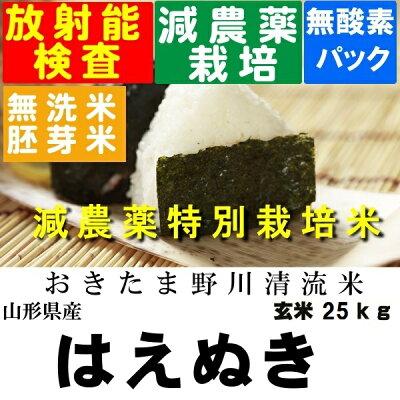 送料無料・無洗米・分搗き対応特別栽培米はえぬき玄米30K