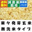 瑞穂の国のらくらく発芽玄米 28年産 減農薬米使用 4.5kgx2袋 無洗米タイプ 【金のいぶき・つや姫・ミルキークイーン】