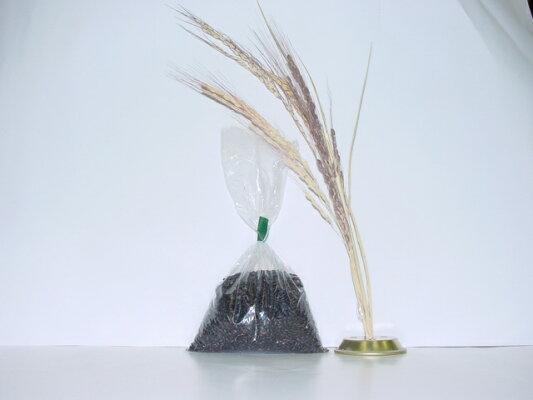 古代米(黒米)100g
