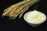 お徳用米 エコノミーライス 精米25kg 【北海道〜近畿地方のみ送料無料】【中国・四国・九州・沖縄地方は追加運賃】【米30kg商品から変わりました】【玄米・無洗米不可】