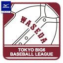 10倍(10/4-10/11)☆ミズノ公式 【東京六大学野球】大学ハンカチタオル 早稲田
