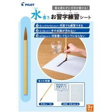 【定型外可300円】パイロット水書きお習字練習シート水筆紙MSN-100P暗線入り、水でお習字の練習ができます何度でも練習できる手や衣服が汚れない