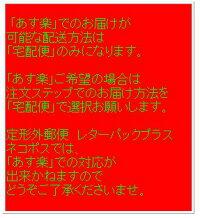 【定型外郵便を選択で送料220円】プラスローラーケシポン消しポンけしぽんIS-500CM-B青ピンク黄色白緑BLUE,PINK,YELLOW,WHITE,GREEN