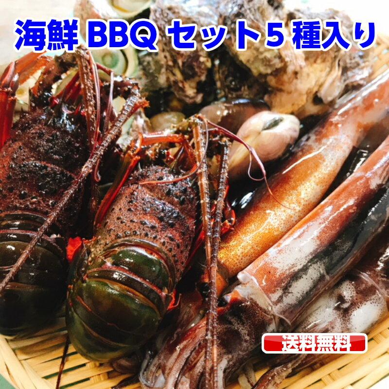 ランキング1位獲得商品 海鮮セット 福袋 海鮮豪華5点盛りセット お吸い物 鉄板 ホイル焼き  ( 伊勢海老 2尾 / サザエ 5個 / はまぐり 5個 / 殻付き牡蛎 5個 / スルメイカ 5杯)