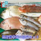 毎週金曜日販売!【毎週10個限定】お客様評価4.8以上!!三重県産 天然 季節の鮮魚セット 熊野灘 熊野 魚セット 下処理OK 3枚卸しOK