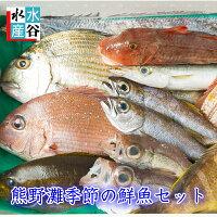 季節の鮮魚セット
