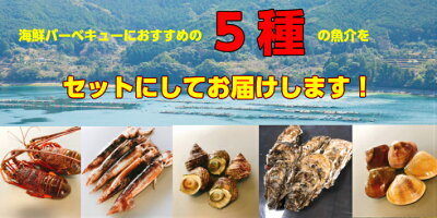 BBQに!海鮮バーベキューセット(5種入)バーベキュー海鮮送料無料伊勢エビサザエハマグリカキイカ