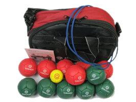 ボールとケース、各種付属品です